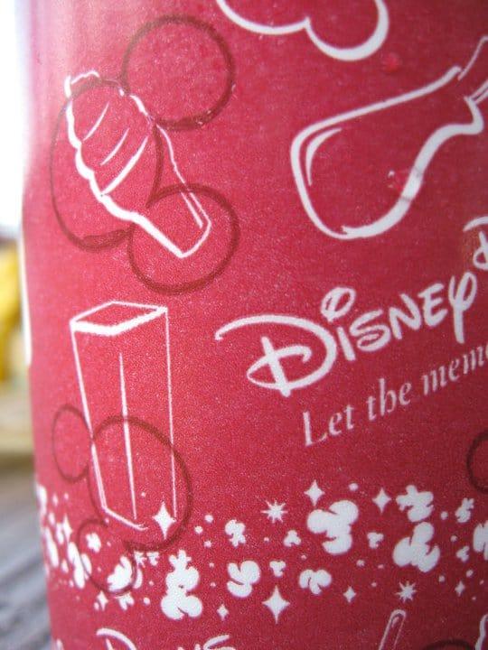 Preparing & Dealing with Walt Disney World Summertime Heat