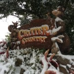 Critter Country Tokyo Disneyland Covered in Snow