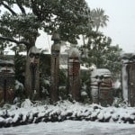 Snow Covered Statues in Adventureland