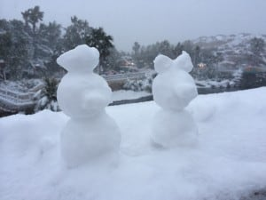 Donald and Daisy Snowmen