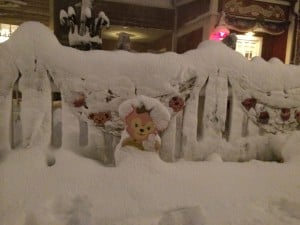 Shellie May was almost lost in the American Waterfront under all the snow!