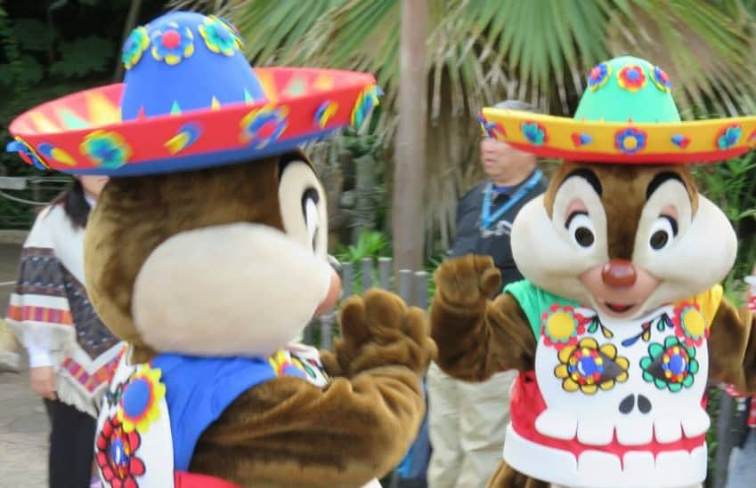 Chip 'N' Dale's Skeleton Fiesta