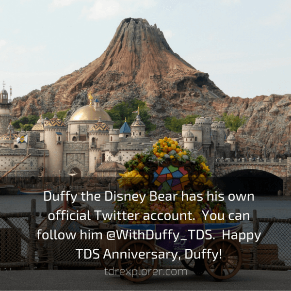 Duffy the Disney Bear has his own official Twitter account. You can follow him @WithDuffy_TDS. Happy TDS Anniversary, Duffy!