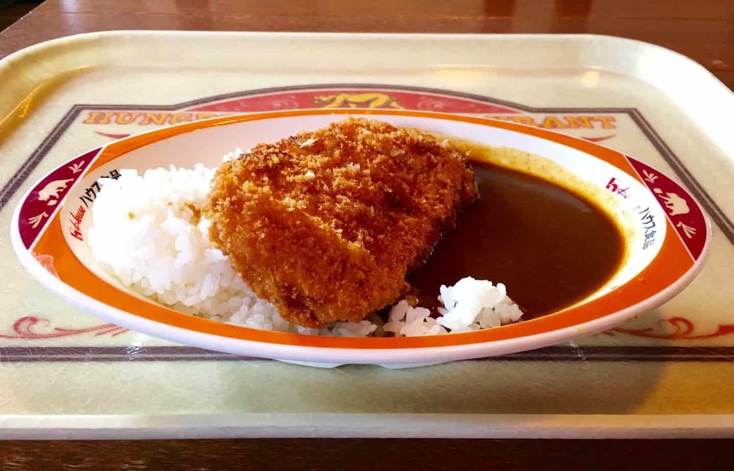 Hungry Bear Tokyo Disneyland Curry