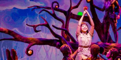 Out of Shadowland Review at Tokyo DisneySea