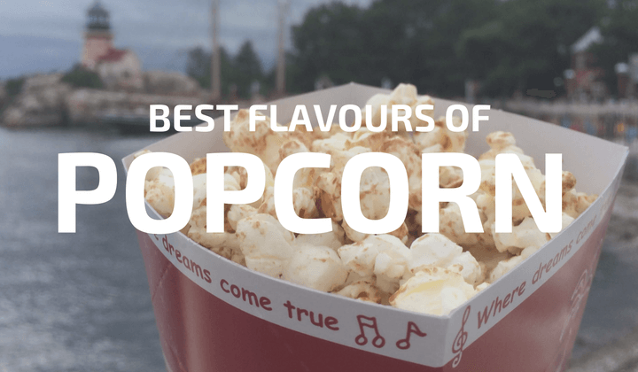 Best Popcorn Flavours at Tokyo Disneyland DisneySea