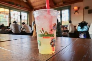 sparkling-lemon-jelly-camp-woodchuck-kitchen-tokyo-disneyland