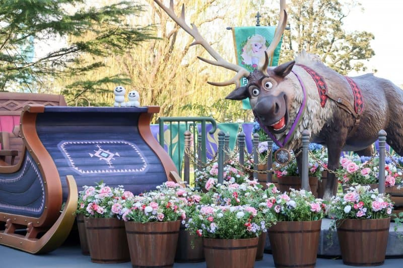 Anna and Elsa Frozen Fantasy Photo Opt Sven Tokyo Disneyland