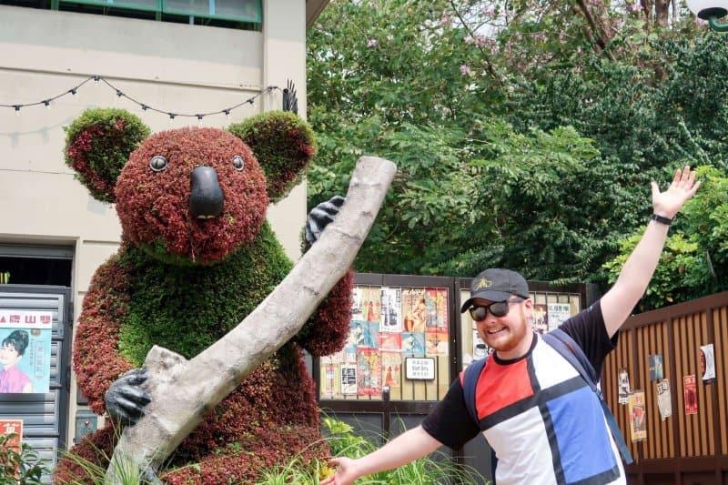 Ocean Park Hong Kong Koala