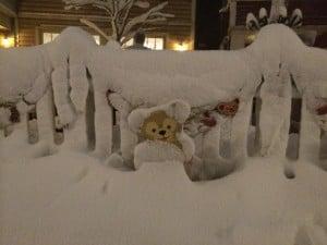 Duffy Covered in Snow in Tokyo DisneySea