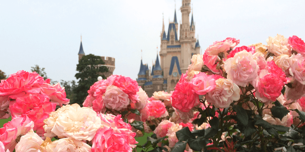 15 Things You Cannot Miss at Tokyo Disneyland