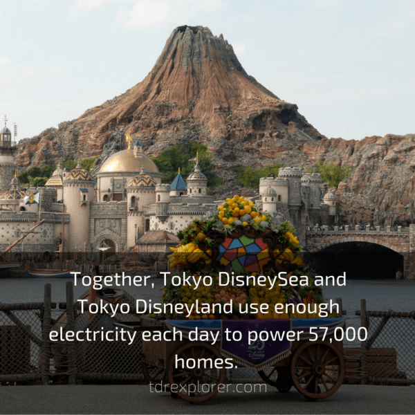 Together, Tokyo DisneySea and Tokyo Disneyland use enough electricity each day to power 57,000 homes.