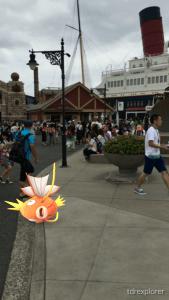 Magikarp Tokyo DisneySea