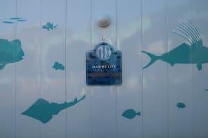 Nemo & Friends SeaRider Construction