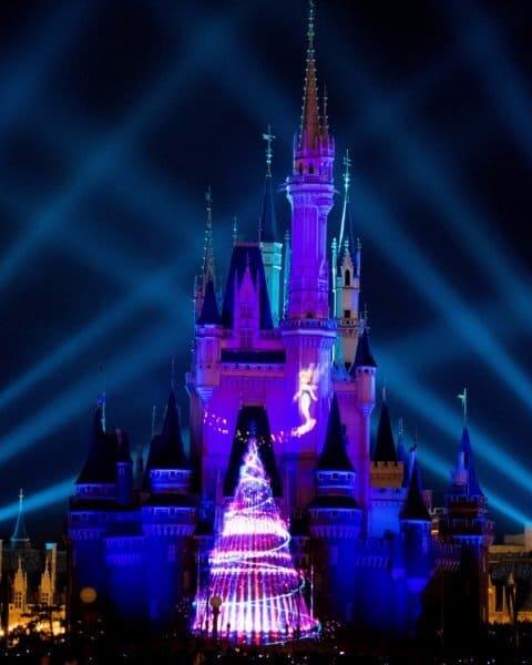 Disney Gifts of Christmas Tokyo Disneyland