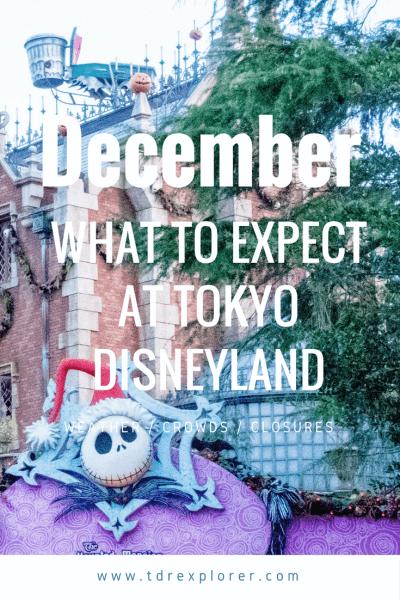 December Tokyo Disneyland Pinterest