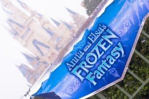 Anna Elsa's Frozen Fantasy Snow Banner