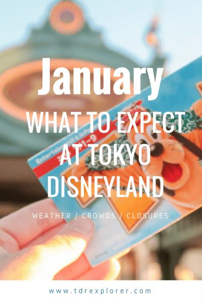 January Tokyo Disney Resort Pinterest