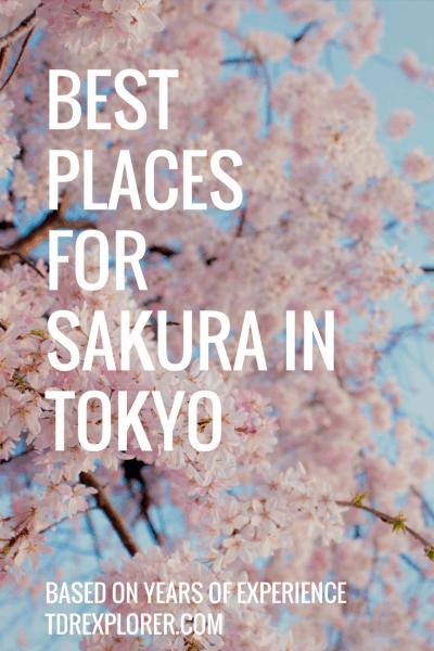 Best Place for Sakura in Tokyo