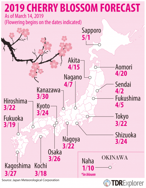 Cherry Blossom Forecast Japan 2019