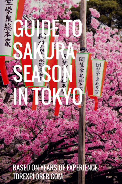 Guide to Sakura Season in Tokyo