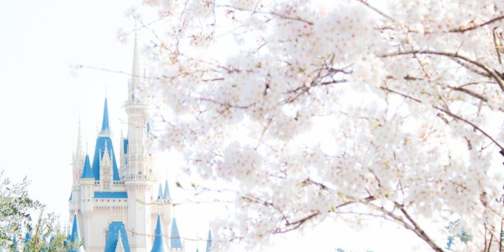 Sakura Tokyo Disneyland