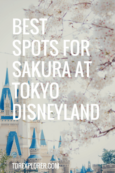 Sakura Tokyo Disneyland Pinterest
