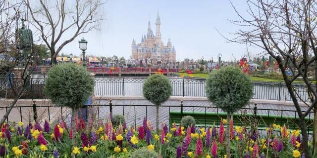 Shanghai Spring Castle