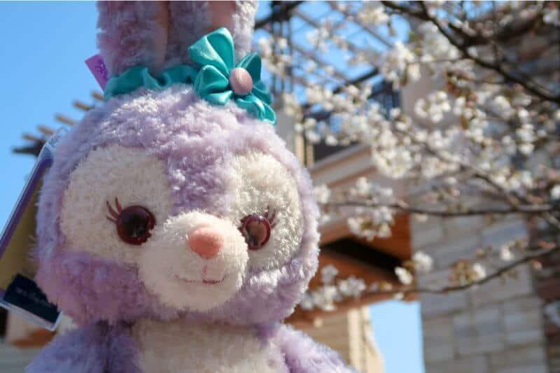 StellaLou Sakura Tokyo Disney Resort
