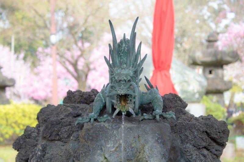 Ueno Park Tokyo Japan Sakura Dragon