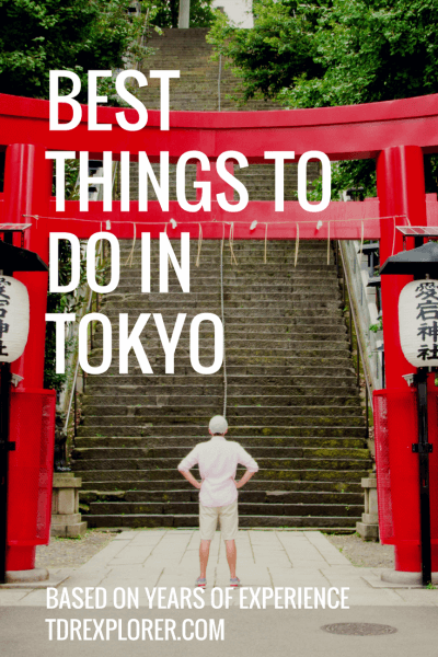 Best Things To Do in Tokyo Torii Pinterest