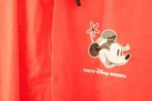 Minnie Mouse Poncho Front