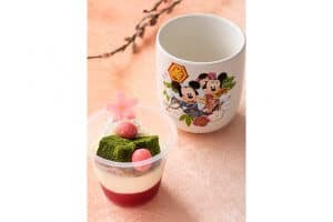 Strawberry Dessert with Souvenir Cup