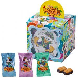 Chocolate Cookies Tokyo Disney Summer Merchandise