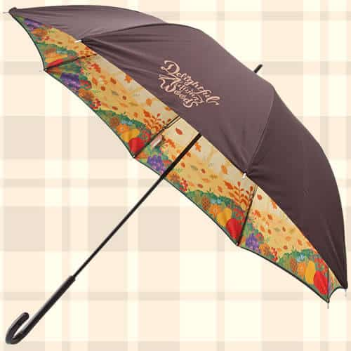 Umbrella Duffy Merchandise Tokyo Disney Resort 2019