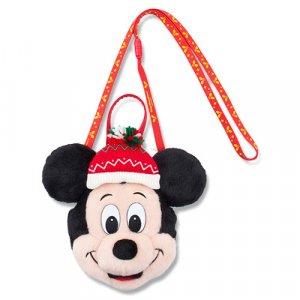 Mickey Pass Case
