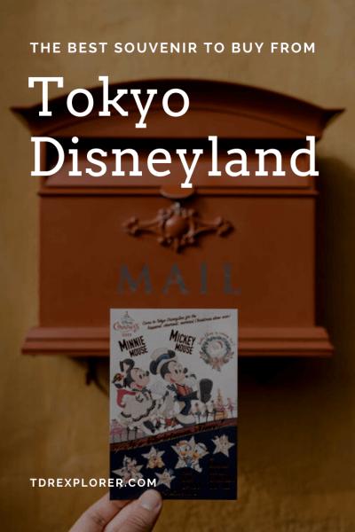 Best Souvenir from Tokyo Disneyland Pinterest