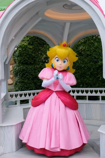 Princess Peach Character Greeting