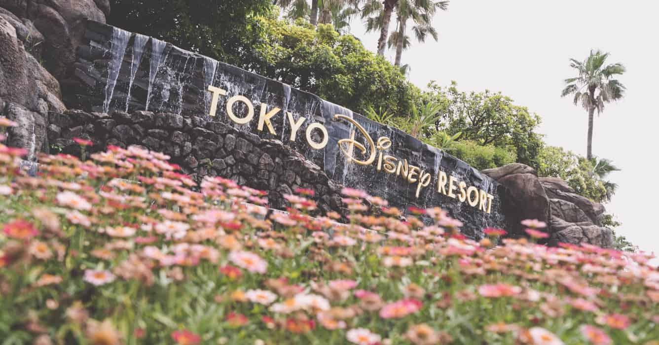 Tokyo Disney Resort News Feed (Beta)